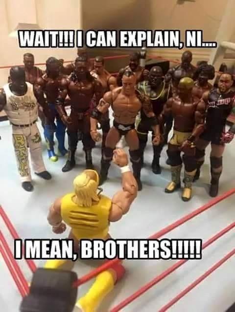 Racist Hogan